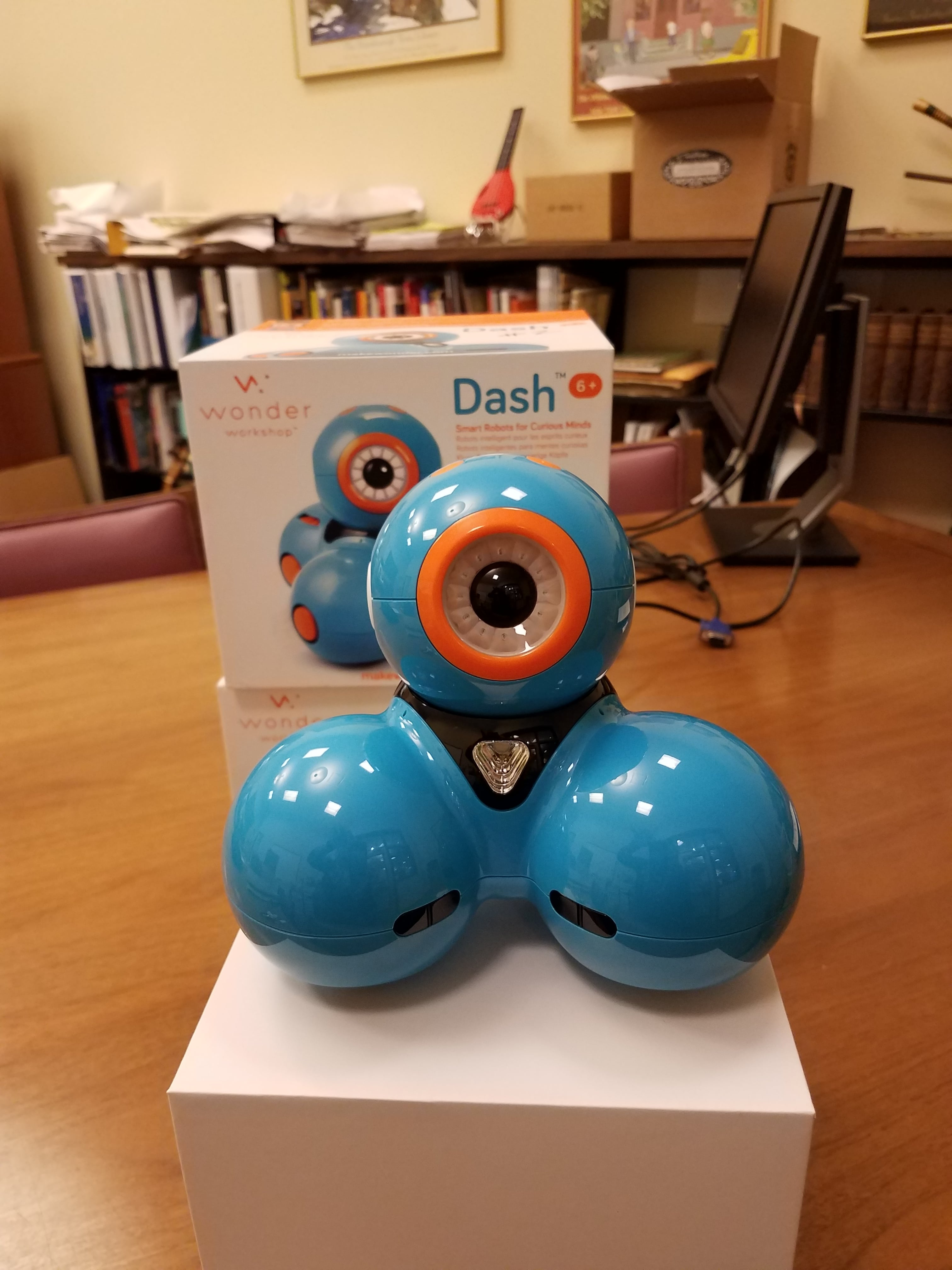 Image of a Dash Robot sitting on a table
